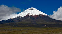 Cotopaxi National Park Hiking and Biking Tour, Quito, Private Sightseeing Tours