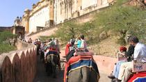 Private Jaipur City Highlights Tour with a visit to The Amber Fort and The City Palace, Jaipur, ...