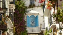 Private walking tour in Marbella