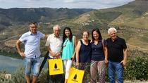 Douro Valley and Wine Tour, Porto, Wine Tasting & Winery Tours