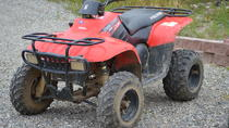 Classic ATV Adventure, Denali National Park, 4WD, ATV & Off-Road Tours