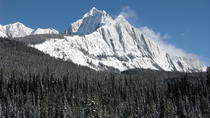 Learn to Cross Country Ski in the Canadian Rockies, Alberta, Ski & Snow