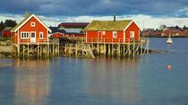 Full Day Guided Tour of the Lofoten Islands, Norway, Full-day Tours