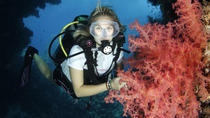 5 Day Dive Pack for Certified Divers, Marsa Alam, Scuba Diving