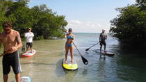 2 Hour Paddle Board Eco Tour, Key West, Stand Up Paddleboarding