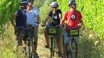 Full-Day Marlborough Wine Region Bike Hire, Blenheim, Bike & Mountain Bike Tours