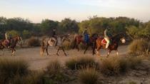 3 Hours Horse Riding with Diner and Overnight From Essaouira, Essaouira, Nature & Wildlife
