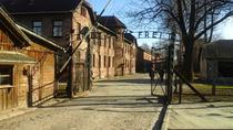 Full-Day Private Tour to Auschwitz from Wroclaw, Wrocław, Private Tours