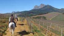 Private Wine Country Tour with a Twist from Cape Town, Cape Town, Private Tours