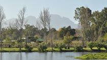 Full-Day Photoshoot Experience on the Spier Wine Estate with Wine Tasting, Stellenbosch, Cultural...