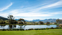 Photo Shoot on Jordan Wine Estate with Wine Tasting and Cheese Platter from Stellenbosch, ...