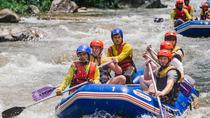 Whitewater Rafting with Elephant Trekking from Phuket , Phuket, White Water Rafting & Float Trips