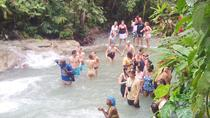 Dunn's River Falls Tour from Montego Bay, Montego Bay, Half-day Tours