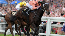 Horse Racing at Ascot Racecourse - Grandstand Admission, Windsor & Eton, Attraction Tickets