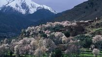 Private Day Trip: Atlas Mountains, Ourika Valley, Berber Village, Waterfall, Takerkoust Lake from ...