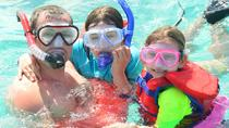 Glass Bottom Boat and Reef Explorer from Punta Cana, Punta Cana, Glass Bottom Boat Tours