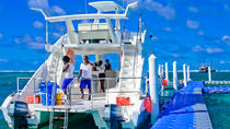 Sharks and Stingray Catamaran Excursion from Punta Cana , Punta Cana, Day Cruises