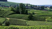 Small-Group Day Tour of Epernay: Picturesque Moet et Chandon and Hautvillers with Champagne Tasting ...