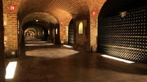 Small-Group Day Tour of Moët et Chandon and Taittinger with Champagne Tasting from Reims, Reims