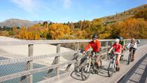 Full Day Bike Tour of Queenstown Trails, Queenstown