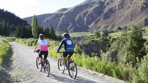 Half Day Self-Guided Bike Tour of the Wineries , Queenstown, Wine Tasting & Winery Tours