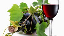8 Hour Napa Valley Wine Tasting Tour from San Francisco, Napa & Sonoma, Wine Tasting & Winery ...
