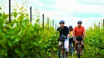 Niagara Winery Bicycle Tour with Cheese, Niagara Falls & Around, Wine Tasting & Winery Tours