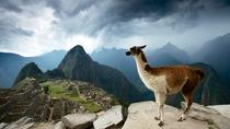 5-Day Machu Picchu Tour and Highlights of Cusco, Cusco, Private Sightseeing Tours