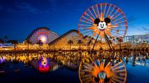 VIP Tours at Disneyland and California Adventure, Anaheim & Buena Park, Bus Services