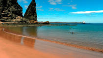 8-Day Galapagos Island Hopping Tour: Land Tour Including 4 Islands, Galapagos Islands, Multi-day ...