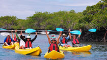 8-Day Galapagos Multi-Sport Adventure Tour Visiting Three Islands, Galapagos Islands, Multi-day ...