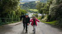 Half-Day Iconic Dunedin City Tour , Dunedin & The Otago Peninsula, Half-day Tours