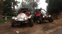 Rent a Buggie and Drive Off-Road In Madeira Island, Funchal, Self-guided Tours & Rentals