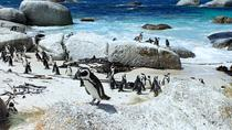 Best Views of the Cape Private Tour from Cape Town, Cape Town, Day Trips