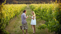 Summer Romance Private Wine Tour in the Western Cape, Cape Town, Wine Tasting & Winery Tours