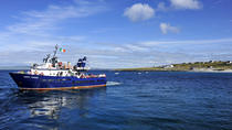 Boat Trip to Inis Oirr in the Aran Islands from Doolin, Western Ireland, Day Cruises