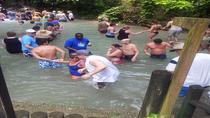 Half-Day Dunn's River Falls Tour from Montego Bay, Montego Bay, Half-day Tours