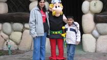Parc Asterix Theme Park Tickets and Transport, Paris, Theme Park Tickets & Tours