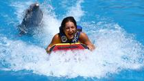 Adventure Tour in Cancun: Dolphin Swim, Ziplining and Rappelling, Cancun, Swim with Dolphins