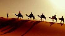 Desert Tour: Wahiba Sands, Wadi Bani and Khalid, Muscat, Cultural Tours