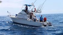 4-Hour Shared Fishing Charter in Tenerife, Tenerife, Day Trips