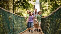Discover Foxfire Mountain Adventure Park Activity Pass, Pigeon Forge