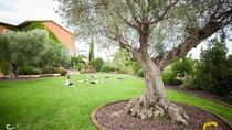 Seasonal Yoga Retreats, Figueres