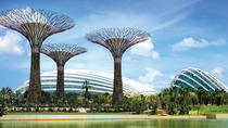 Gardens By The Bay Ticket including One-Way Transfer, Singapore, Attraction Tickets