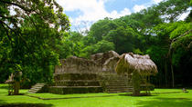 Day Trip to Ceibal Archaeological Site, Flores, Day Trips