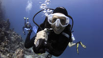Scuba Diving Course in Open Waters in Sharm-el-Sheikh, Sharm el Sheikh, Scuba & Snorkelling