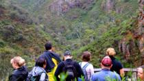 Half Day Small-Group Morialta Conservation Park Trip from Adelaide, Adelaide, Hiking & Camping