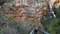Small Group Bush Walk with Sinclair's Gully Winery Day Trip from Adelaide Including Lunch, ...