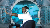 Barbados Shore Excursion: Atlantis Submarine Expedition, Barbados, Southern Caribbean Shore ...