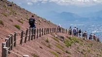 Private Day Tour from Rome to Pompeii Ruins and Mount Vesuvius with Lunch and Wine Tasting...